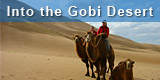 Trips to the Gobi Desert