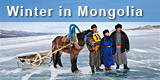 Winter trips to Mongolia